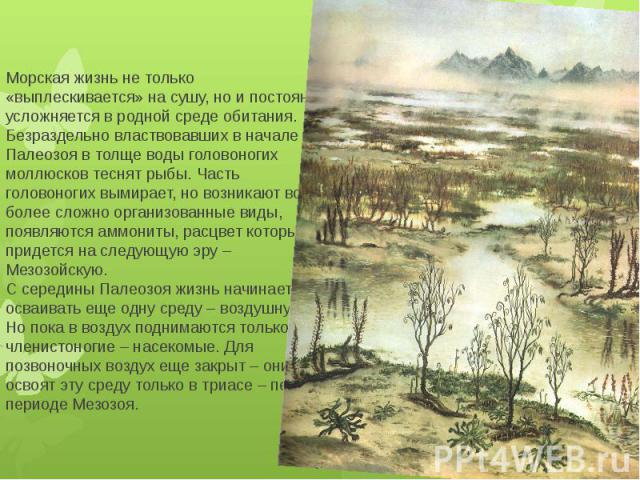 Морская жизнь не только «выплескивается» на сушу, но и постоянно усложняется в родной среде обитания. Безраздельно властвовавших в начале Палеозоя в толще воды головоногих моллюсков теснят рыбы. Часть головоногих вымирает, но возникают все более сло…