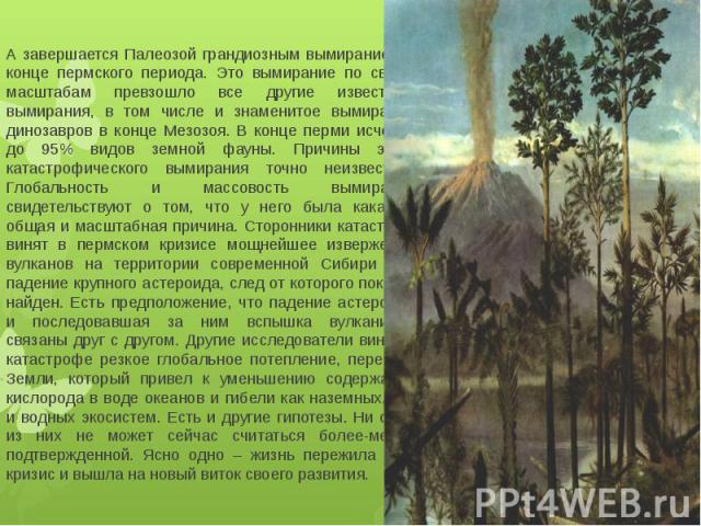 А завершается Палеозой грандиозным вымиранием в конце пермского периода. Это вымирание по своим масштабам превзошло все другие известные вымирания, в том числе и знаменитое вымирание динозавров в конце Мезозоя. В конце перми исчезло до 95% видов зем…