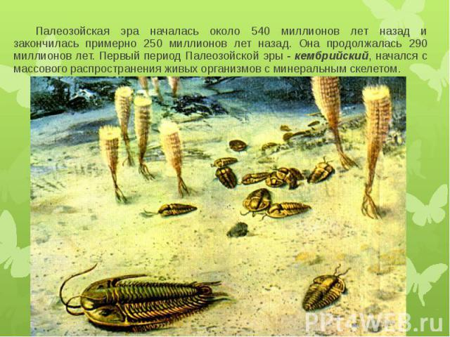 Палеозойская эра началась около 540 миллионов лет назад и закончилась примерно 250 миллионов лет назад. Она продолжалась 290 миллионов лет. Первый период Палеозойской эры - кембрийский, начался с массового распространения живых организмов с минераль…
