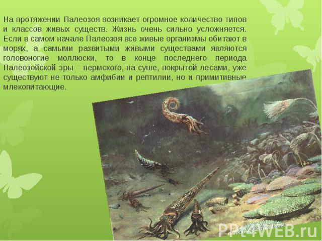 На протяжении Палеозоя возникает огромное количество типов и классов живых существ. Жизнь очень сильно усложняется. Если в самом начале Палеозоя все живые организмы обитают в морях, а самыми развитыми живыми существами являются головоногие моллюски,…