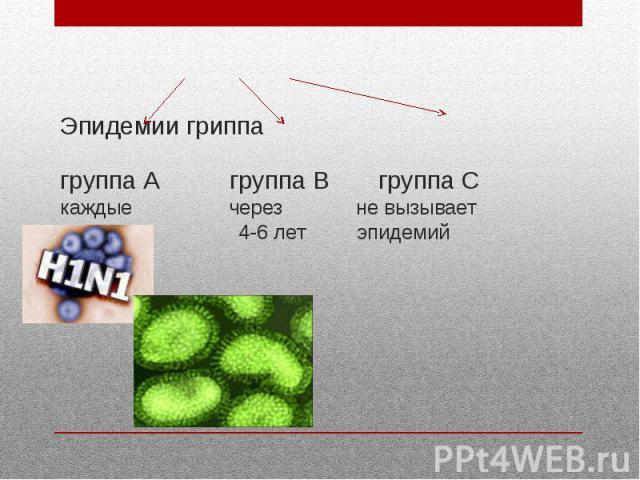 Эпидемии гриппа группа А группа В группа С каждые через не вызывает 2-3 года 4-6 лет эпидемий