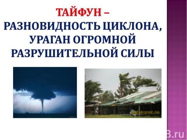 Тайфун – разновидность циклона, ураган огромной разрушительной силы