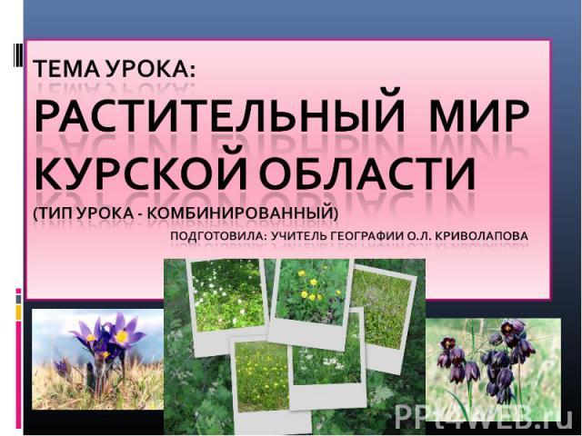 Тема урока: Растительный мир Курской области (тип урока - комбинированный) подготовила: учитель географии О.Л. Криволапова