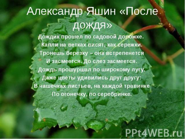 Александр Яшин «После дождя»Дождик прошел по садовой дорожке. Капли на ветках висят, как сережки. Тронешь березку – она встрепенется И засмеется. До слез засмеется. Дождь прошуршал по широкому лугу. Даже цветы удивились друг другу: В чашечках листье…