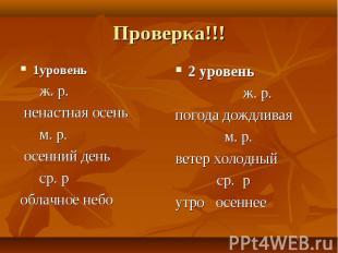 Проверка!!!1уровень ж. р. ненастная осень м. р. осенний день ср. р облачное небо