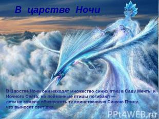 В царстве Ночи В Царстве Ночи они находят множество синих птиц в Саду Мечты и Но