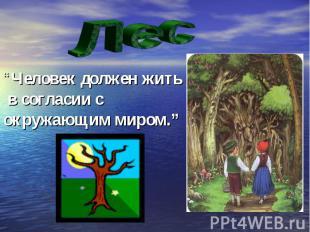 """Лес """"Человек должен жить в согласии с окружающим миром."""""""