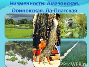 Низменности: Амазонская, Оринокская, Ла-Платская