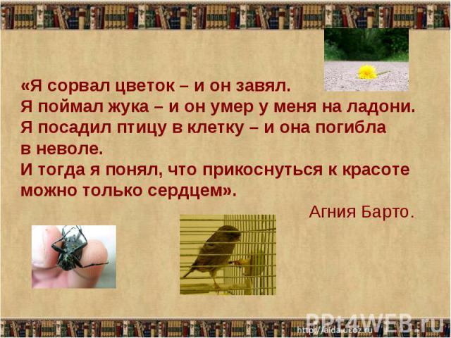 «Я сорвал цветок – и он завял. Я поймал жука – и он умер у меня на ладони. Я посадил птицу в клетку – и она погибла в неволе. И тогда я понял, что прикоснуться к красоте можно только сердцем». Агния Барто.