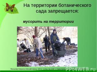 На территории ботанического сада запрещается: мусорить на территории