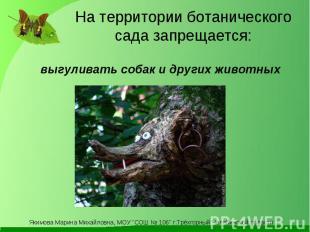 На территории ботанического сада запрещается: выгуливать собак и других животных
