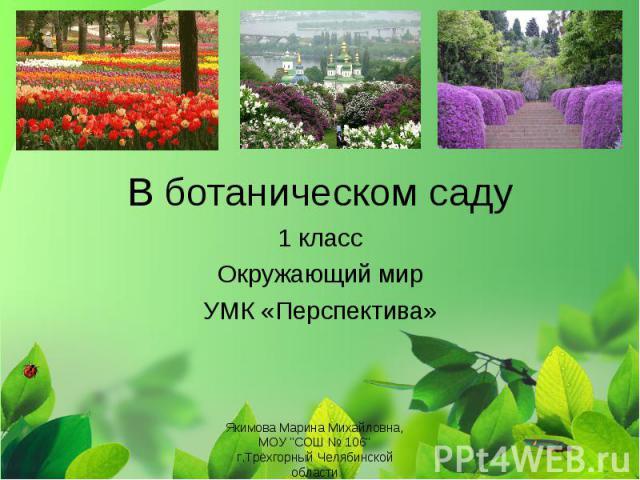 В ботаническом саду 1 класс Окружающий мир УМК «Перспектива» Якимова Марина Михайловна, МОУ