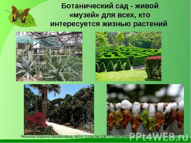 Ботанический сад - живой «музей» для всех, кто интересуется жизнью растений