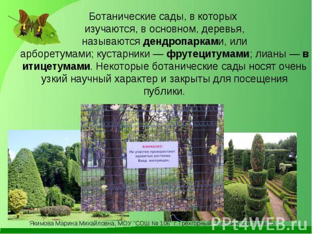 Ботанические сады, в которых изучаются, в основном, деревья, называютсядендропарками, или арборетумами;кустарники—фрутецитумами;лианы—витицетумами. Некоторые ботанические сады носят очень узкий научный характер и закрыты для посещения публики.
