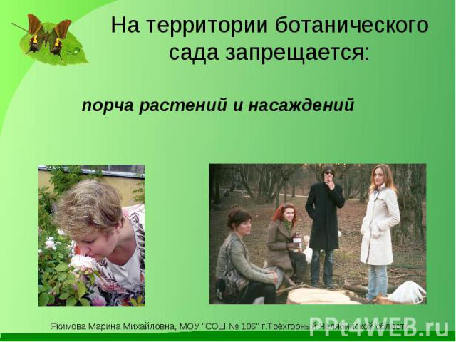 На территории ботанического сада запрещается: порча растений и насаждений