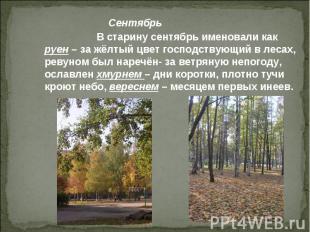 В старину сентябрь именовали как руен – за жёлтый цвет господствующий в лесах, р