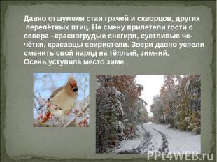 Давно отшумели стаи грачей и скворцов, других перелётных птиц. На смену прилетел