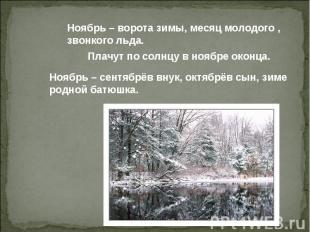 Ноябрь – ворота зимы, месяц молодого , звонкого льда. Плачут по солнцу в ноябре