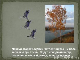 Махнул старик-годовик четвёртый раз – и поле- тели ещё три птицы. Подул холодный