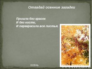 Отгадай осенние загадки Пришла без красок И без кисти, И перекрасила все листья.