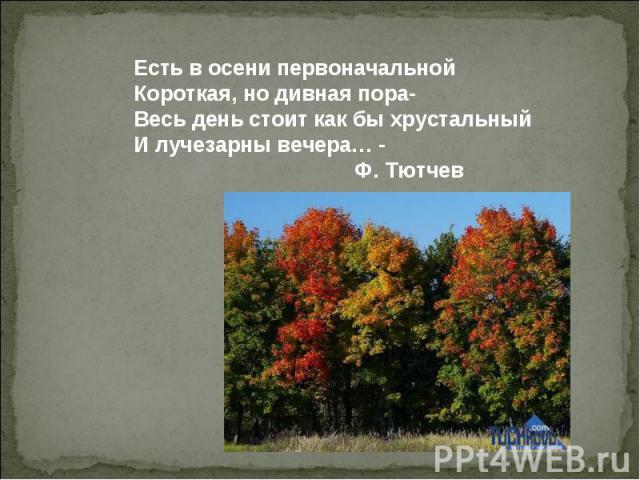 Есть в осени первоначальной Короткая, но дивная пора- Весь день стоит как бы хрустальный И лучезарны вечера… - Ф. Тютчев