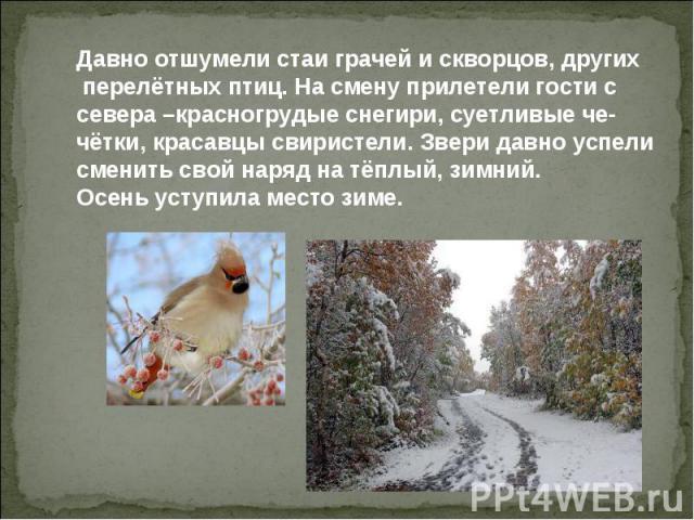 Давно отшумели стаи грачей и скворцов, других перелётных птиц. На смену прилетели гости с севера –красногрудые снегири, суетливые че- чётки, красавцы свиристели. Звери давно успели сменить свой наряд на тёплый, зимний. Осень уступила место зиме.