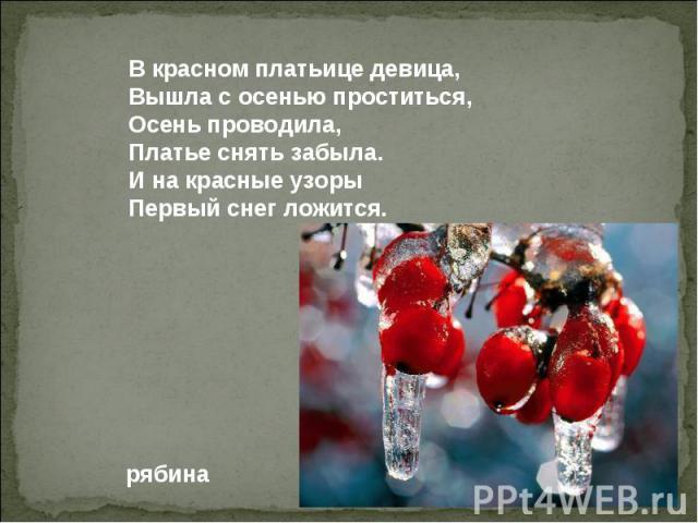В красном платьице девица, Вышла с осенью проститься, Осень проводила, Платье снять забыла. И на красные узоры Первый снег ложится.