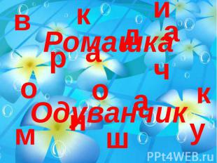Ромашка Одуванчик