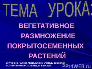 ТЕМА УРОКА: ВЕГЕТАТИВНОЕ РАЗМНОЖЕНИЕ ПОКРЫТОСЕМЕННЫХ РАСТЕНИЙ Волчихина Галина А