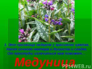1. Это прозвище недаром у красивого цветка. Капля сочного нектара и душиста и сл
