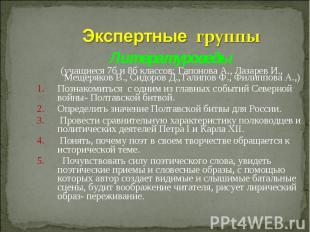 Экспертные группыЛитературоведы (учащиеся 7б и 8б классов: Гапонова А., Лазарев