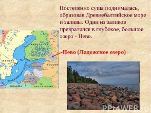 Постепенно суша поднималась, образовав Древнебалтийское море и заливы. Один из з