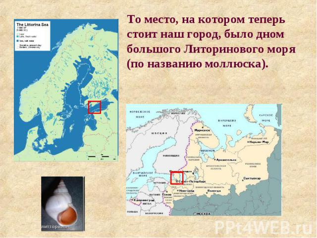 То место, на котором теперь стоит наш город, было дном большого Литоринового моря (по названию моллюска).