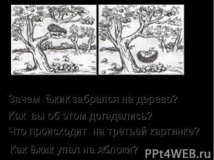 Зачем ёжик забрался на дерево? Как вы об этом догадались? Что происходит на трет