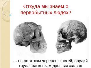 Откуда мы знаем о первобытных людях? … по остаткам черепов, костей, орудий труда