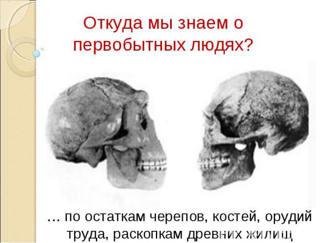 Откуда мы знаем о первобытных людях? … по остаткам черепов, костей, орудий труда, раскопкам древних жилищ