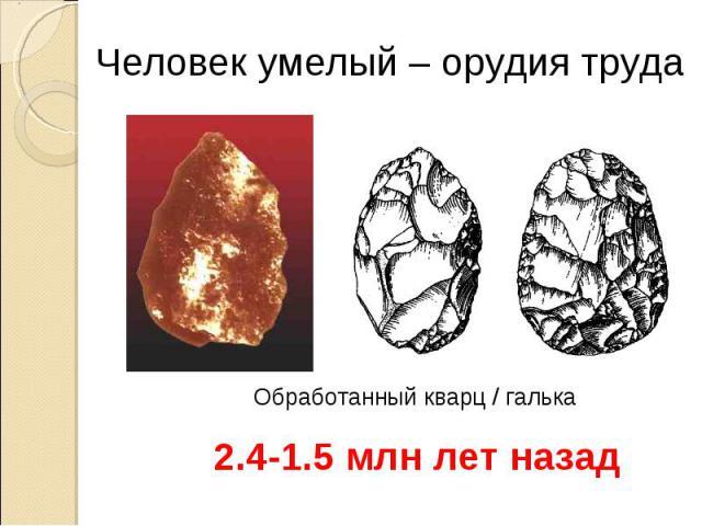 Человек умелый – орудия труда Обработанный кварц / галька 2.4-1.5 млн лет назад