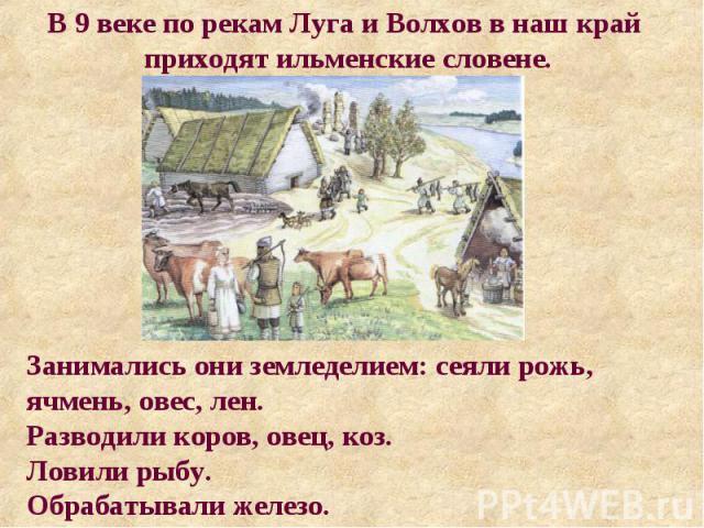 В 9 веке по рекам Луга и Волхов в наш край приходят ильменские словене. Занимались они земледелием: сеяли рожь, ячмень, овес, лен. Разводили коров, овец, коз. Ловили рыбу. Обрабатывали железо.