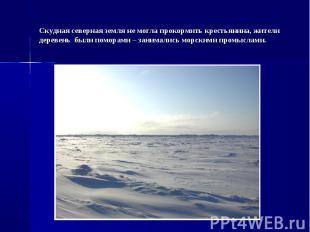 Скудная северная земля не могла прокормить крестьянина, жители деревень были пом