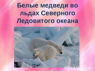 Белые медведи во льдах Северного Ледовитого океана