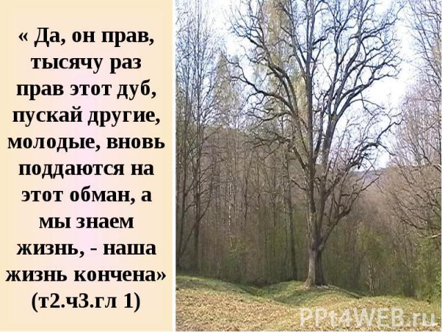 « Да, он прав, тысячу раз прав этот дуб, пускай другие, молодые, вновь поддаются на этот обман, а мы знаем жизнь, - наша жизнь кончена» (т2.ч3.гл 1)