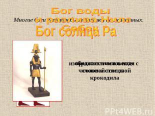 Бог воды и разлива Нила Себек Многие боги египтян были похожи на животных. предс
