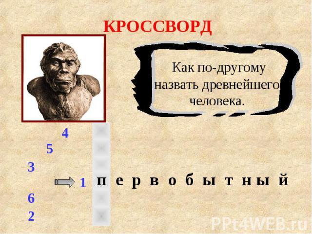 КРОССВОРД Как по-другому назвать древнейшего человека.