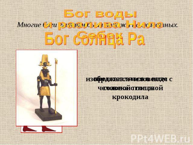 Бог воды и разлива Нила Себек Многие боги египтян были похожи на животных. представлялся в виде человека с головой крокодила