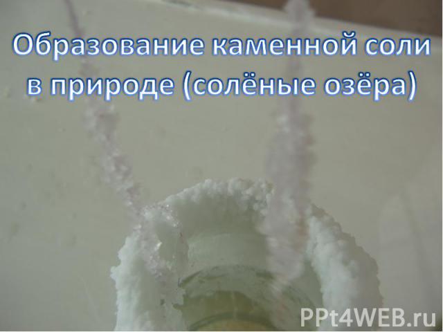 Образование каменной соли в природе (солёные озёра)