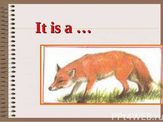 It is a …