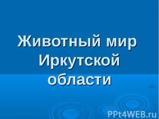 Животный мир Иркутской области