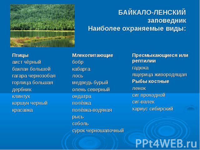 БАЙКАЛО-ЛЕНСКИЙ заповедник Наиболее охраняемые виды: