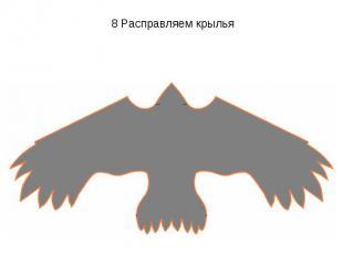 8 Расправляем крылья
