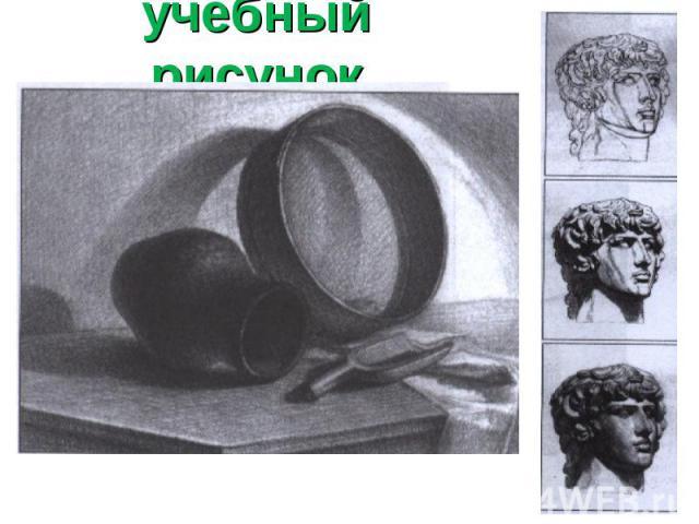 учебный рисунок